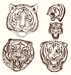 set of hand drawn tattoo with tiger animals vector image
