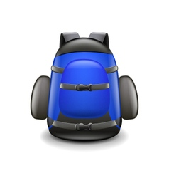 Backpack isolated on white vector image