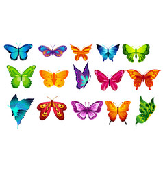 bright colors butterflies vector image vector image