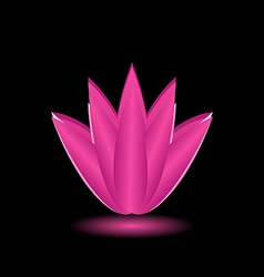 Lotus flower isolated on black background vector image