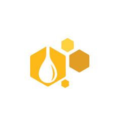 Bee icon design vector