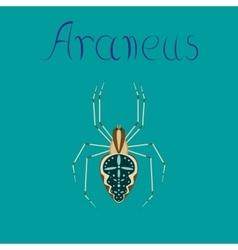 Flat on background spider araneus vector