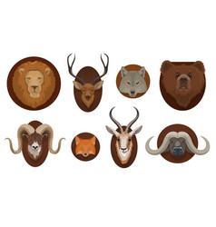 Hunting trophies wild animals heads mount vector