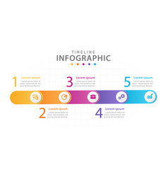 infographic template for business 5 steps vector image