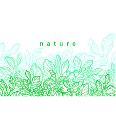nature card graphic botanical plant green mate vector image