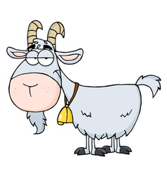 Gray Goat vector image
