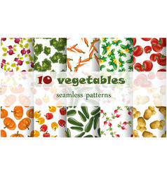 10 mixed vegetables seamless patterns set tomato vector