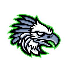 American harpy eagle mascot vector