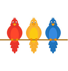 Colorful amusing parrots vector