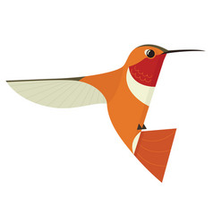 Humming bird icon isolated vector