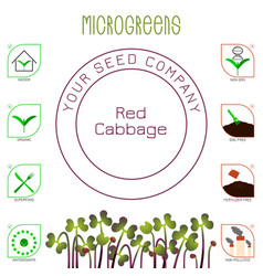Microgreens red cabbage seed packaging design vector