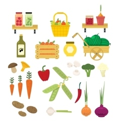 Organic Food Icons Set vector