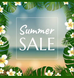 sale poster with palm trees and plumeria vector image