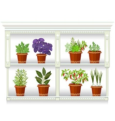 Shelfs with collection of herbs in a flowerpots at vector