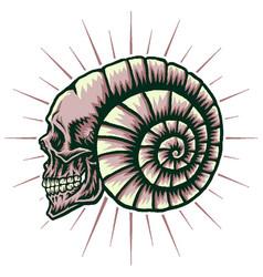 shell skull vector image