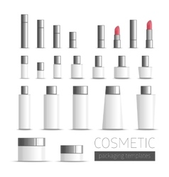 Templates cosmetics packaging vector image