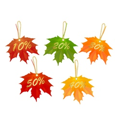 autumn designed sale cards vector image vector image