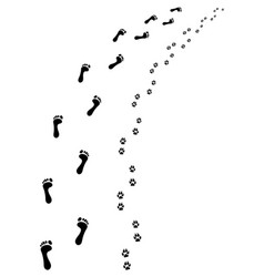 bare feet and paws vector image