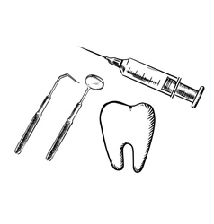 Icons of tooth syringe mirror and probe vector image vector image