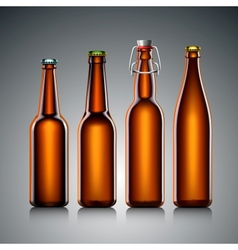 Beer bottle clear set with no label vector