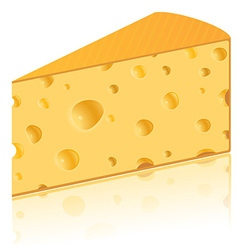 cheese 04 vector image