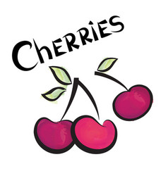 cherry sign isolated berry fruit tag fresh farm vector image