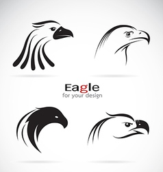 group eagle head design vector image