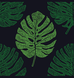 tropical palm leaves monstera seamless pattern vector image