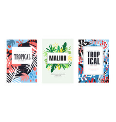 tropical summer banner templates set malibu vector image