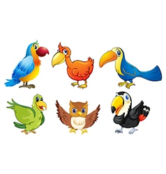 Six flying birds vector image vector image