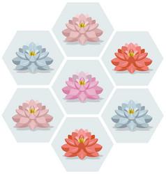 waterlily flowers set pattern vector image