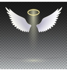 Wings and golden halo vector image