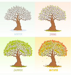 Big tree seasons vector