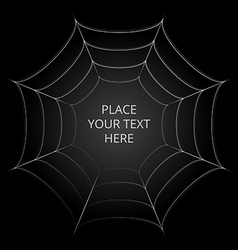Frame of a spider web on black background vector image