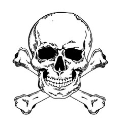 Jolly roger engraving style vector