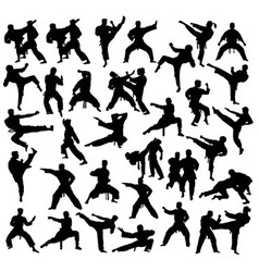 Martial Art Sport Activity Silhouettes vector