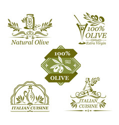 Olives icons for organic olive oil vector