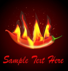 Red chilli flames vector