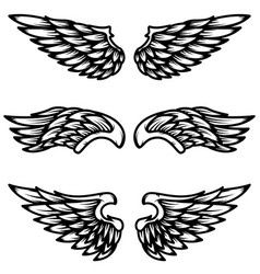 set wings isolated on white background design vector image