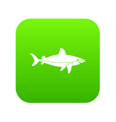 shark fish icon digital green vector image vector image