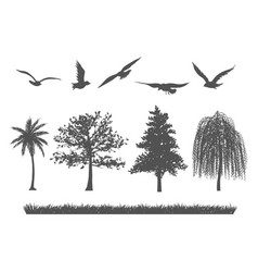 silhouette of forest tree birds and grasses vector image