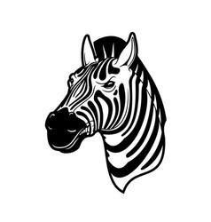 Zebra animal head black and white african horse vector
