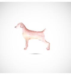 Watercolor dog vector image vector image