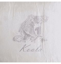 vintage of a koala bear on the old wrinkled paper vector image vector image