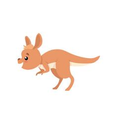 Cute baby kangaroo funny brown wallaby australian vector