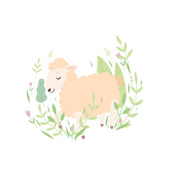 cute little lamb sleeping on spring meadow vector image