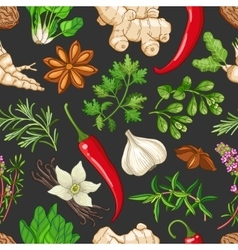 hot pattern with herbs on dark vector image