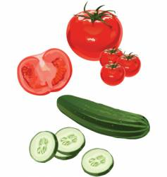 tomato cucumber vector image vector image