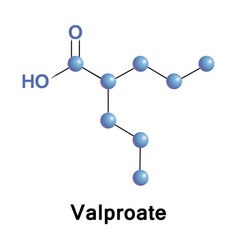 Valproate epilepsy treatment vector