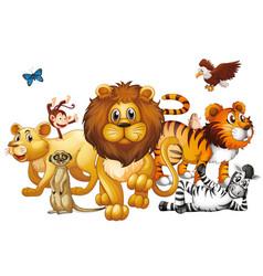 wild animals on white background vector image